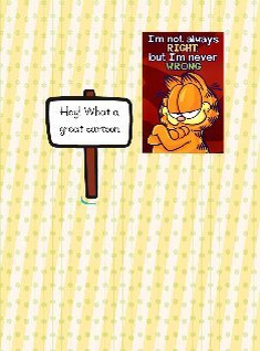 Garfield is a great cartoon
