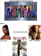 America's Next Top Model Cycle 14's thumbnail