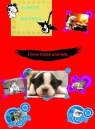dogs & cats's thumbnail