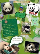 panda lovers Grace and Nadia's thumbnail