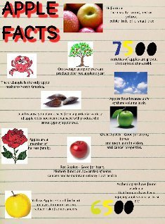 Applefacts