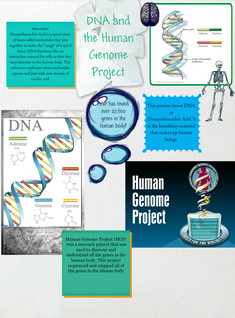 DNA and HGP