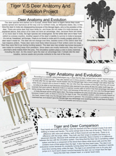 Science Anatomy and Evolution Project