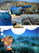 Sea Pollution's thumbnail