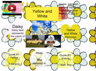Daisy: Yellow and White