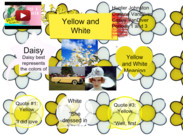 Daisy: Yellow and White's thumbnail