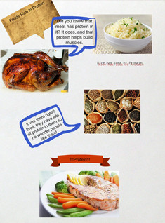 Foods Rich in Protein