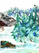 cave spruce forest's thumbnail
