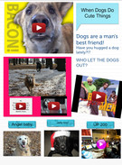 When Dogs Do Cute Things!!'s thumbnail