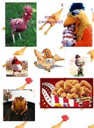 OMG!!! CHICKEN!!!'s thumbnail