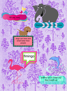 all about amimals