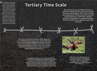 Tertiary Time Scale - Aubri Slaugh