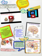 PSY assignment (Reticular Activating System)'s thumbnail