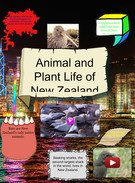 animal/plant life of New Zealand,ED and DS's thumbnail