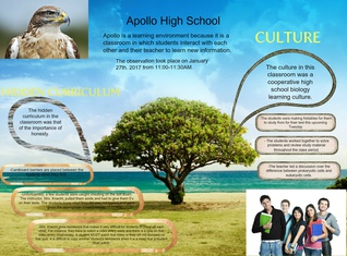 Apollo High School Biology Class Culture