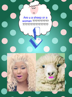 sheep or a woman