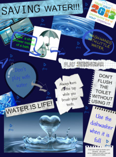 Saving Water Project