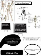 The skeletal system's thumbnail