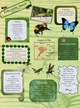 Arthropods: Insects thumbnail