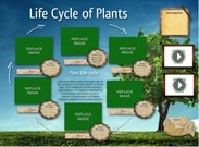 Life cycle of plants's thumbnail