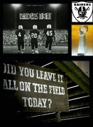 raiders night - book's thumbnail