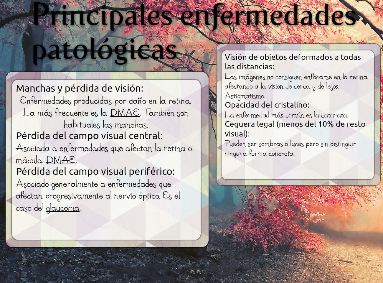 ANATOMIA: text, images, music, video | Glogster EDU - Interactive ...