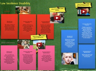 Low Incidence Disability