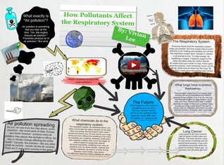 how pollutants affect the respiratory system